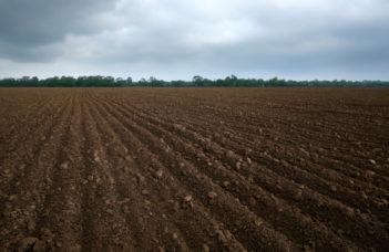 Les analyses de terre via le réseau REQUASUD.