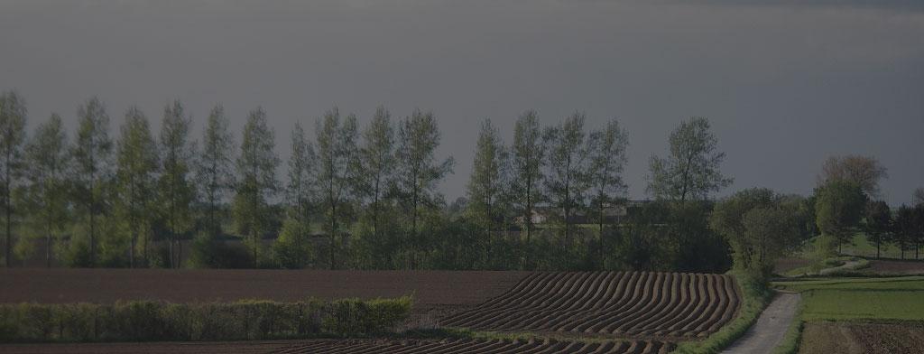 Gestion des plants fermiers et de la fiche parcellaire