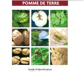 Guide Pratique : « Maladies, Ravageurs et désordre de la pomme de terre