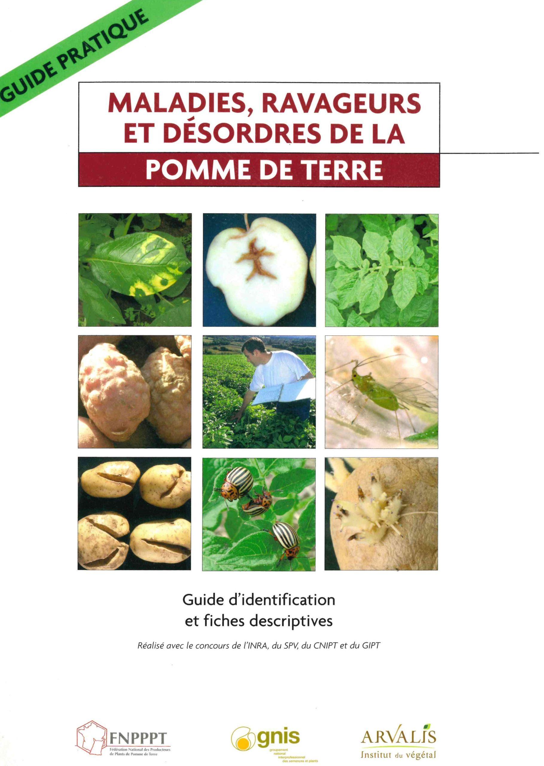 Promotion octobre 2020 : Guide Pratique : « Maladies, Ravageurs et désordre de la pomme de terre