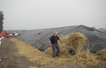 La «kuilbewaring» ou conservation en silo: un exemple pratique dans le nord de la Campine.