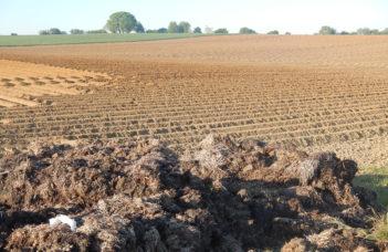 Fertilisation raisonnée et valorisation des engrais de ferme en culture de pomme de terre