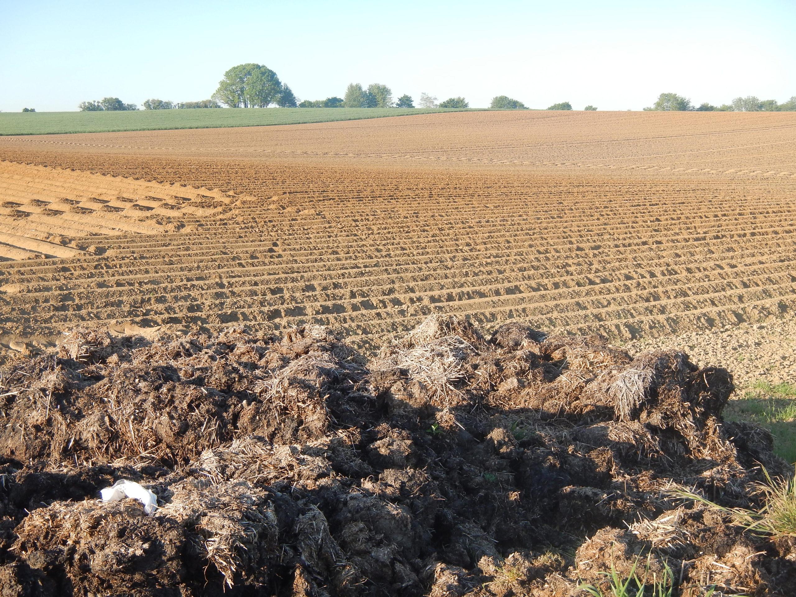 De substantielles économies d'engrais grâce à Valor* pour mieux utiliser les engrais de ferme.