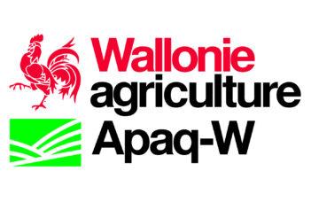 Le comportement et les habitudes de consommation des pommes de terre en Wallonie en 2016